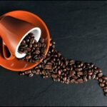 káva druhy kávy